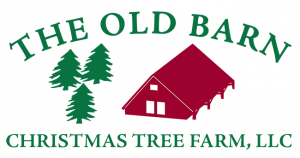 The old barn christmas tree farm